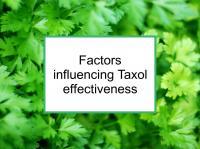 Factors influencing Taxol effectiveness