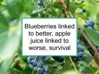 Blueberries linked to better, apple juice linked to worse, survival