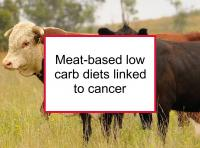 Meat-based low carb diets linked to cancer