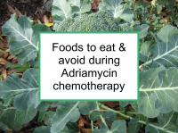 Foods to eat & avoid during Adriamycin chemotherapy