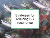 Strategies for reducing BC recurrence