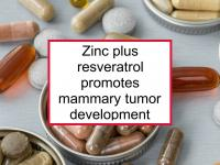 Zinc plus resveratrol promotes tumors
