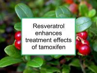 Resveratrol enhances tamoxifen treatment