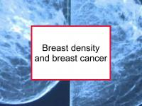 Breast density and breast cancer