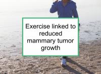 Exercise linked to reduced mammary tumor growth