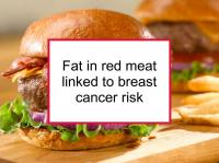 Fat in red meat linked to breast cancer risk