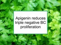 Apigenin reduces triple negative BC proliferation