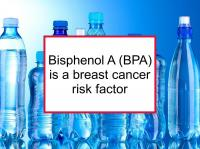 Bisphenol A (BPA) is a breast cancer risk factor