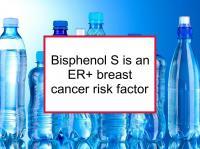 Bisphenol S is an ER+ breast cancer risk factor