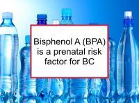 Bisphenol A (BPA) is a prenatal risk factor for BC