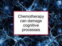 Chemotherapy can damage cognitive processes