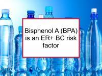 Bisphenol A (BPA) is an ER+ BC risk factor