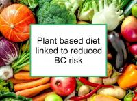 Plant based diet linked to reduced BC risk
