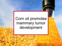 Corn oil promotes tumor development