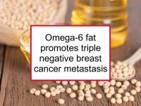 Omega-6 fat promotes triple negative breast cancer metastasis