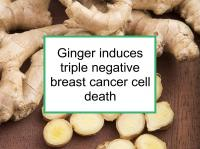 Ginger induces triple negative breast cancer cell death