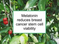 Melatonin reduces breast cancer stem cell viability