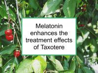 Melatonin enhances the treatment effects of Taxotere