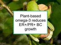 Plant-based omega-3 reduces BC growth