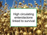High enterolactone linked to survival