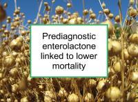 Prediagnostic enterolactone linked to survival