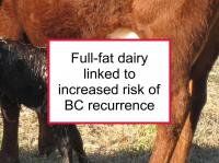Full-fat dairy linked to increased recurrence
