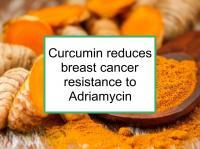 Curcumin reduces Adriamycin resistance