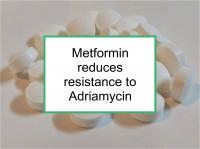 Metformin reduces resistance to Adriamycin