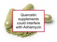 Quercetin could harm Adriamycin treatment