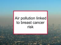 Air pollution linked to breast cancer risk