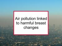 Air pollution linked to harmful breast changes