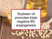 Soybean oil promotes triple negative BC angiogenesis
