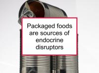 Packaged foods have endocrine disruptors