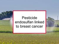 Pesticide endosulfan linked to breast cancer