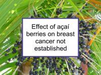 Effect of açaí berries on breast cancer not established