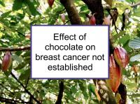 Effect of chocolate on breast cancer not established
