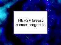 HER2+ breast cancer prognosis
