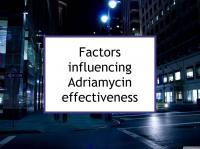 Factors influencing Adriamycin effectiveness