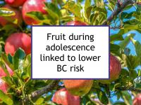 Fruit during adolescence linked to lower BC risk
