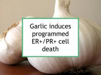 Garlic induces ER+/PR+ cell death