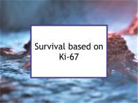Recurrence data based on proliferation marker (Ki-67)