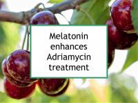 Melatonin enhances Adriamycin treatment